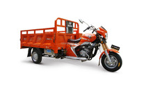Motorized Adult China Three Wheel Motorcycle Latest Products in Market