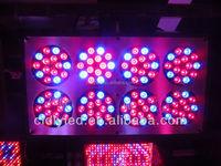 2015 Popular Advanced Cidly LED Series 300w 12-band LED Grow Light DUAL VEG/FLOWER SPECTRUM