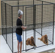 dogs houses