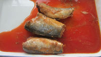 HALAL Fish Canned Canned Sardine Shelf Life 24 Month in Tomato Sauce