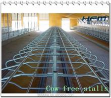 cattle lying frame, cattle lying bar, free stalls beds
