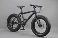 20 inch Fat bike mongoose bmx bike