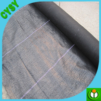 Landscape pp plastic cover fabric weed proof mat,Eco anti weed woven cloth for greenhouse,strawberry protection anti root mat