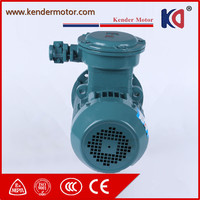 High Quality Low Price Explosion Proof 3 Phase Motor Different Voltage With CCC Certificate
