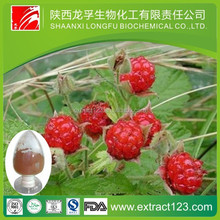Manufacturer Supply Raspberry Leaf Extract