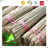Bamboo Tonkin Cane Rattan Bamboo Cane