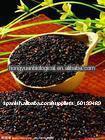 orgánica arroz negro extracto en polvo
