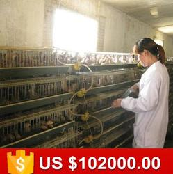 Direct factory stock quail breeding cages