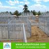 Easy assembly light steel prefabricated villa