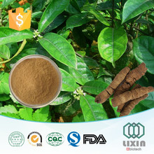 GMP factory supply Natural high quality radix morinda officinalis extract 4:1, 10:1, 20:1 powder for sex power antiaging