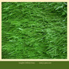 Made in CHINA Soccer turf artificial grass