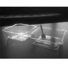 PET clear plastic cake box cake container