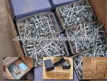 La fábrica China Export paraguas clavos galvanizados para techos
