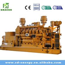 China Supplier 250KVA Natural Gas Generators For Sale