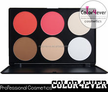 Popular and High Quality Good Price Makeup Blush mineral makeup factory