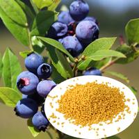 grow more urea fertilizer ammonium sulphate by factory