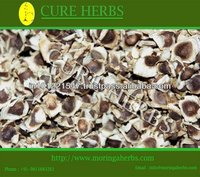 Mature Moringa seeds for oil extraction