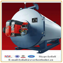 Hot sale New product Chinese manufactuer coal fired industrial thermal oil heater/boiler