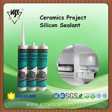 Ceramics Project Silicon Sealant