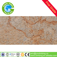 new product 300x600mm foshan wall tile with water proof