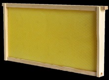 Best Seller Plastic Bee frame plastic bee foundation
