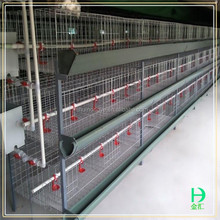New design fancy bird cages,chicken house cage for farm