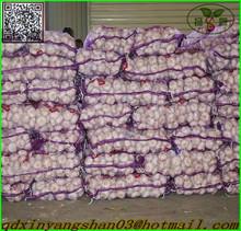 Chinese White Garlic Supplier(5.0cm up)