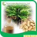 Tongkat ali extrato/sexo natural herb medicina/eurycoma longifolia extrato da raiz de
