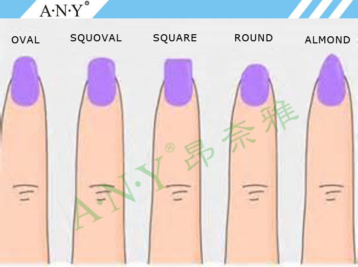 Any French Nails Design Nail Art Painting Wood Handle Uv Gel Oval ...
