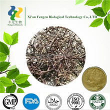 high quality natural Chinese Honeylocust Spine Extract / P.E.