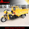 Strong powered China 3 wheel motor tricycle,Gasoline motor tricycle 3 wheeler