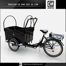 CE best price cargo bike BRI-C01 argo atv for sale