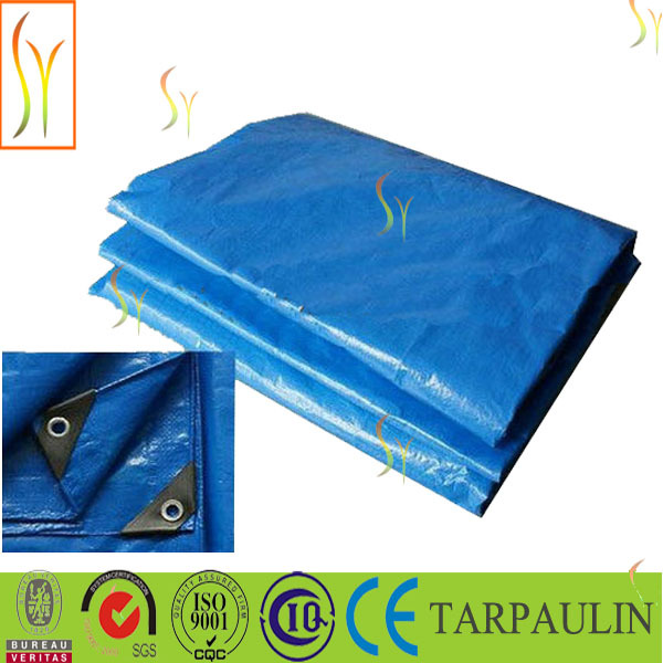 Silver PE tarp car cover ,PE tarpaulin folding car shelter