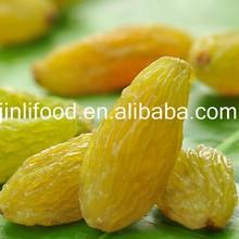 Top quality Raisin (Golden, Green, Sultana, Sun dried)