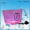 Eco-friendly plastic ice bucket/wine cooler ice bucket