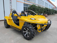TNS cheap offroad buggy two seat go kart for sale