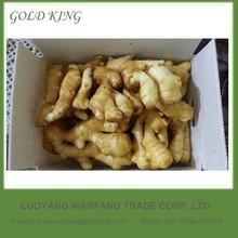 Bulk Supply Fresh Ginger From China