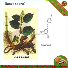 Best selling product resveratrol 98% prue organic resveratrol powder health care resveratrol plant extract