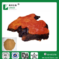 Antrodia cinnamomea Extract Powder with 10%- 50%polysaccharide and triterpene