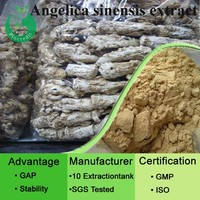 1% ligustilide chinese angelica extract/ angelica root extract/Angelica Root P.E.