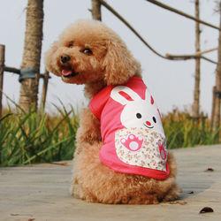 Dog pet products rabbit pet products