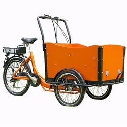 36V 250W Lithium battery electric tricycle with en 15194/3 wheel electric cargo bike/ trike for sale