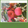 Wholesale Fresh Apple Fuji Apple Exporter in China