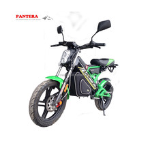 Powerful Professional Green evs Electric Bike