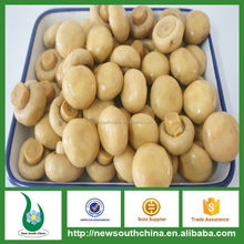 First choice to cook canned mushroom with big size low price tender taste