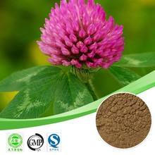 Hot sales plant extract Red clover extract/Isoflavones 8%-60%/Resist tumor Free sample