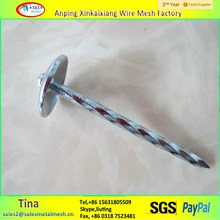 roofing nails with washer head ,galvanized roofing nails ,3 inch roofing nails
