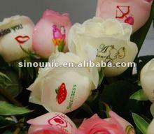 2014 New High Quality Digital Entertainment Flower Printer