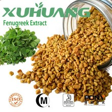 Free sample pure natural 4-hydroxyisoleucine furostanol saponins fenugreek seed extract