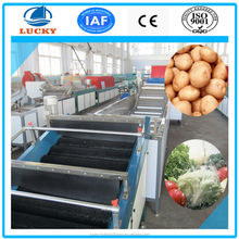 Popular sold automatic fruit cleaning machine fruit cleaner